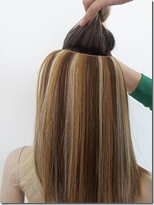 Flip in hair extensions goodyardhair clipimage005 pmusecretfo Image collections